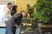 2012 Autumn Bonsai Show