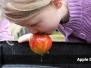 Apple Day Slider