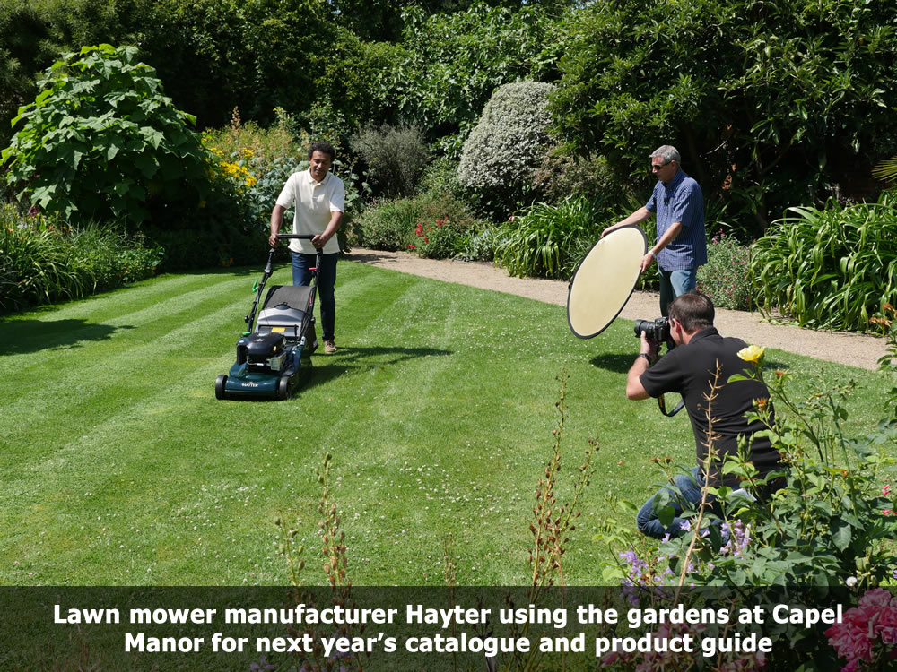 Hayter Lawn mower photo shoot at Capel Manor Gardens.jpg