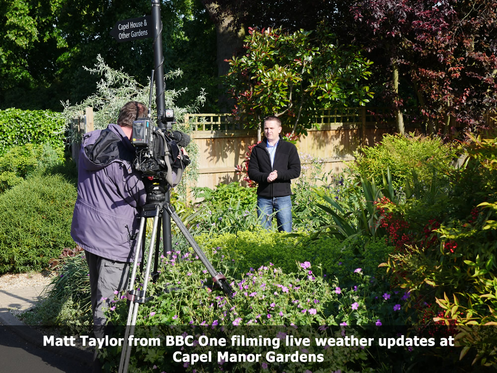 Matt Taylor BBC Live Weather updates at Capel Manor Gardens.jpg