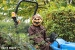halloween-howler-at-capel-manor-gardens-89