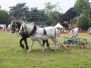 Herts Heavy Horse Show