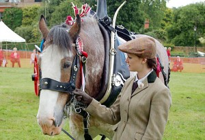 Herts Heavy Horse Show at Capel Manor