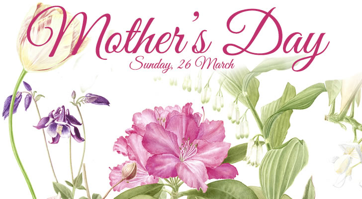 mother's day at Capel Manor Gardens