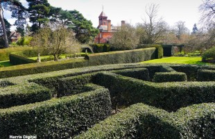 The Maze at Capel Manor College and Gardens