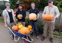 Pumpkins from Mr Fothergill's arrive at Capel Manor College and Gardens