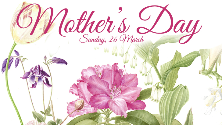 Mothers day web site banner