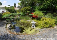 Japanese Garden at Capel Manor