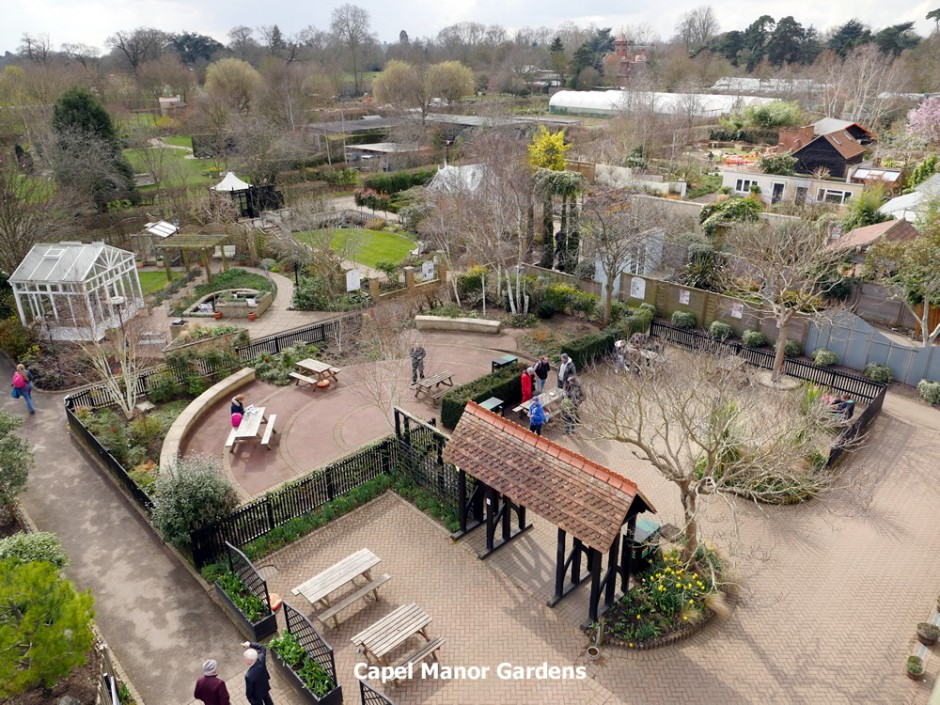 A bird's eye view of the National Gardening Centre at Capel Manor this afternoon.