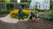 Volunteers clear spring bedding