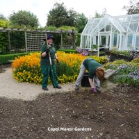 Volunteers clearing spring bedding