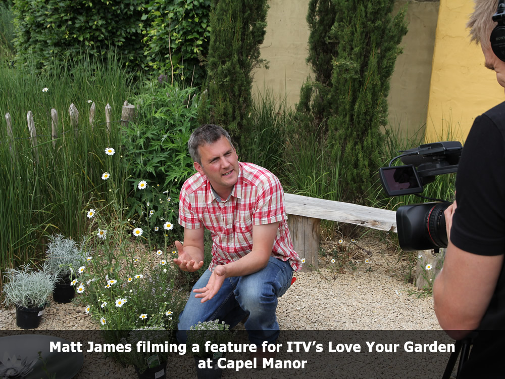 Matt James filming a feature for ITV 1 Love your Garden.jpg