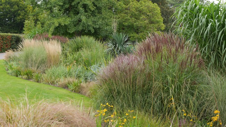 Looking great in the gardens this October