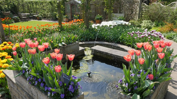 Blooming lovely at Capel Manor Gardens