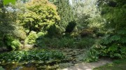 Signs of autumn at Capel Manor Gardens