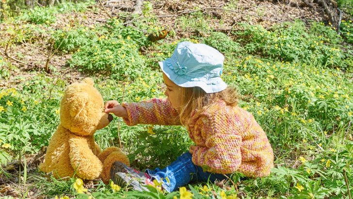 Teddy Bears Picnic Party at Capel