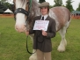 Herts Heavy Horse Show 2011