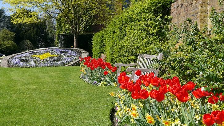 Looking great in the gardens this week at Capel Manor